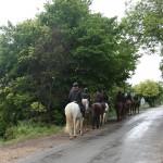 Ruta con caballos en Luesia